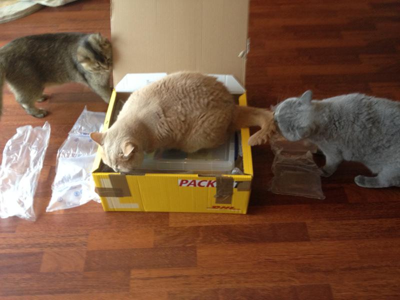 Verpackungsmaterial entfernt